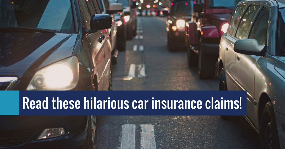 Erie Car Insurance Quote